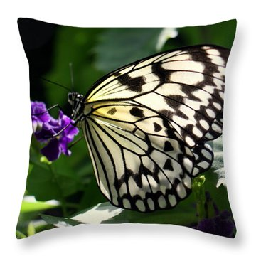 Throw Pillow featuring the photograph Malabar Tree Nymph  by Suzanne Stout