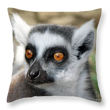 Malagasy Lemur Throw Pillow by Sergey Lukashin