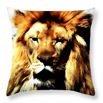 Male African Lion 2 Throw Pillow