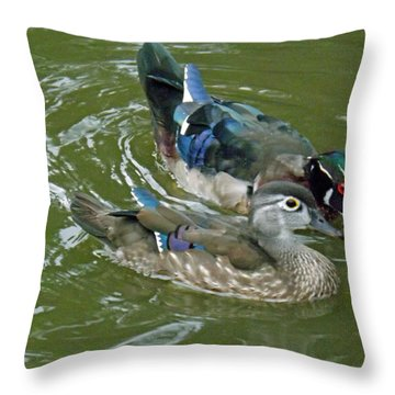 Male And Female Wood Ducks Throw Pillow by Brenda Brown
