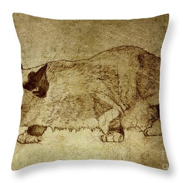 Male Cat Hunts At Night Throw Pillow