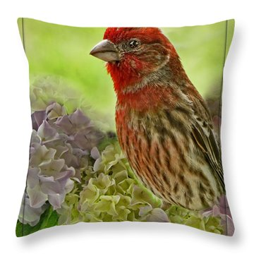 Throw Pillow featuring the photograph Male Finch In Hydrangesa by Debbie Portwood