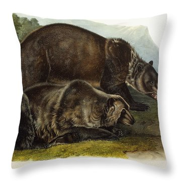 Male Grizzly Bear Throw Pillow by Audubon