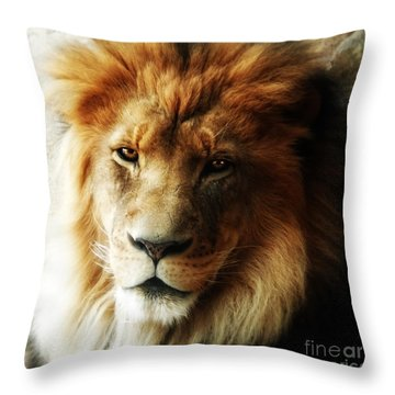 Male Lion Face Close Up Throw Pillow