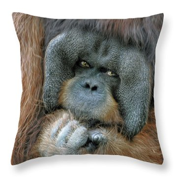 Throw Pillow featuring the photograph Male Orangutan  by Savannah Gibbs