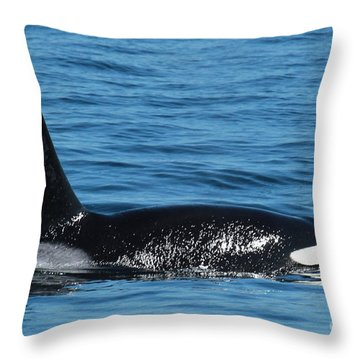 Throw Pillow featuring the photograph Lonesome George Ca165  Male Orca Killer Whale In Monterey Bay California 2013 by California Views Mr Pat Hathaway Archives