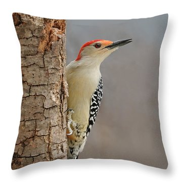Male Redbellied Woodpecker 1 Throw Pillow by Lara Ellis