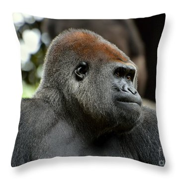 Throw Pillow featuring the photograph Male Silverback by Lisa L Silva