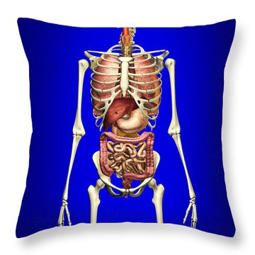 Male Skeleton With Internal Organs Throw Pillow by Leonello Calvetti