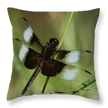 Male Widow Skimmer Dragonfly Throw Pillow