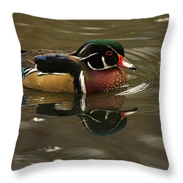 Throw Pillow featuring the photograph Male Wood Duck by Constantine Gregory