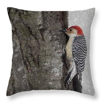 Male Woodpecker Feeding  Throw Pillow