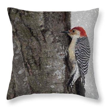Male Woodpecker Feeding  Throw Pillow by Betty  Pauwels