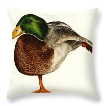 Mallard Ballet Throw Pillow
