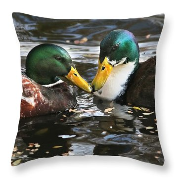 Mallard Duck Pair Share A Quiet Moment Throw Pillow