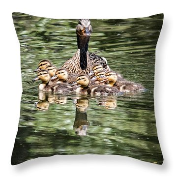 Mallard Hen With Ducklings And Reflection Throw Pillow
