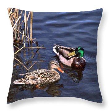 Mallard Mates Throw Pillow