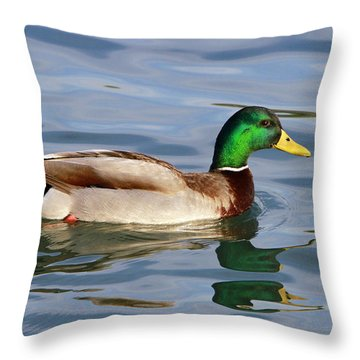 Mallard On The Lake Throw Pillow by Shoal Hollingsworth