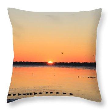 Mallards At Sunrise Throw Pillow