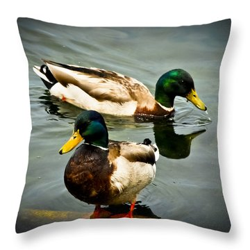 Mallards On Mendota Throw Pillow