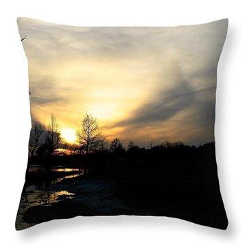 Mallards Silhouette At Sunset Throw Pillow