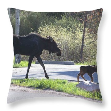 Mama And Baby Moose Throw Pillow
