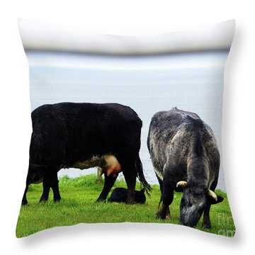Mama Daddy And Baby Throw Pillow by Patricia Griffin Brett