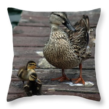 Mama Duck And Ducklings Throw Pillow