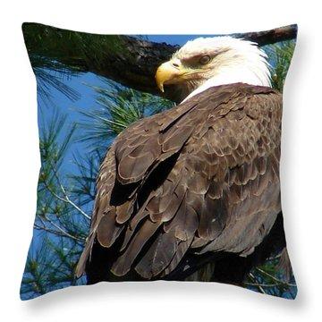 Mama Eagle Watching Throw Pillow