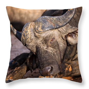 Mama Said There'd Be Days Like This Throw Pillow by Rick Furmanek