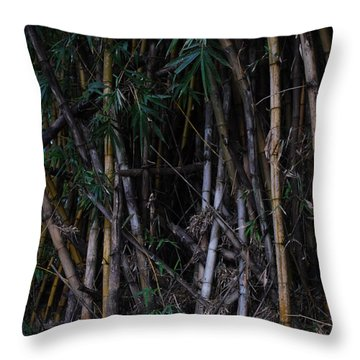 Mambus Throw Pillow
