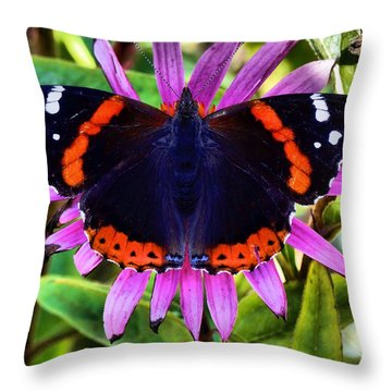 Mammoth Butterfly Throw Pillow by Dan Sproul