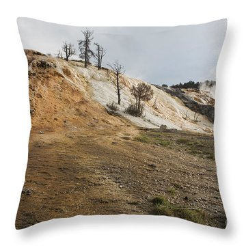 Mammoth Hot Springs Throw Pillow by Belinda Greb