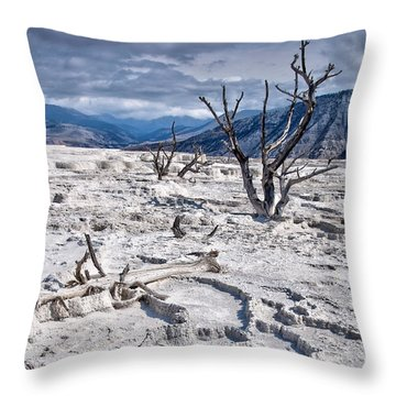 Mammoth Terraces Vertical Throw Pillow