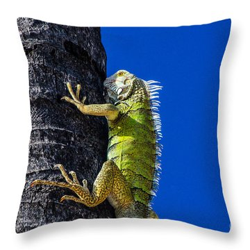 Man Is This Beach Crowded Throw Pillow