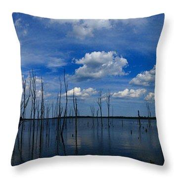 Manasquan Reservoir Panorama Throw Pillow by Raymond Salani III