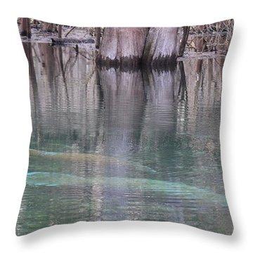 Manatees Entering Spring Throw Pillow