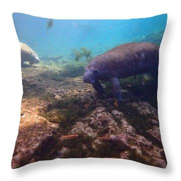 Manatees Feeding 1 Throw Pillow