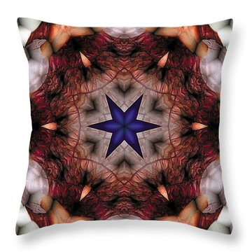 Mandala 14 Throw Pillow by Terry Reynoldson