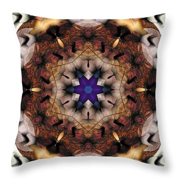 Mandala 16 Throw Pillow by Terry Reynoldson