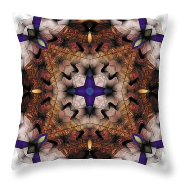 Mandala 17 Throw Pillow by Terry Reynoldson
