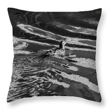Mandarin Duck Bw - Leif Sohlman Throw Pillow