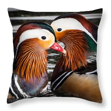 Mandarin Lovers Throw Pillow