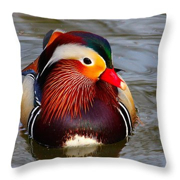 Mandarin Throw Pillow by Paul Marto