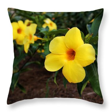Mandevilla Throw Pillow by Judy Vincent
