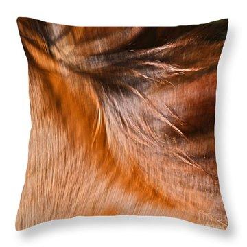 Mane Dance Light Throw Pillow