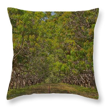 Mango Orchard Throw Pillow by Douglas Barnard