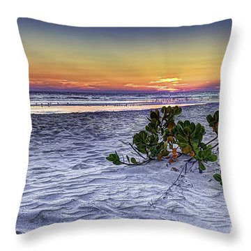 Mangrove On The Beach Throw Pillow by Marvin Spates