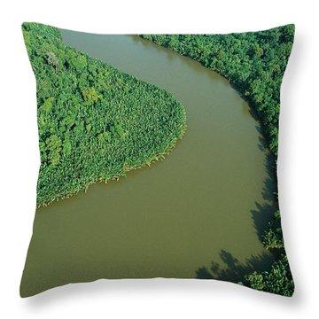 Mangrove Rhizophora Sp In Mahakam Delta Throw Pillow by Cyril Ruoso