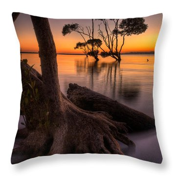Mangroves Of Beachmere Throw Pillow